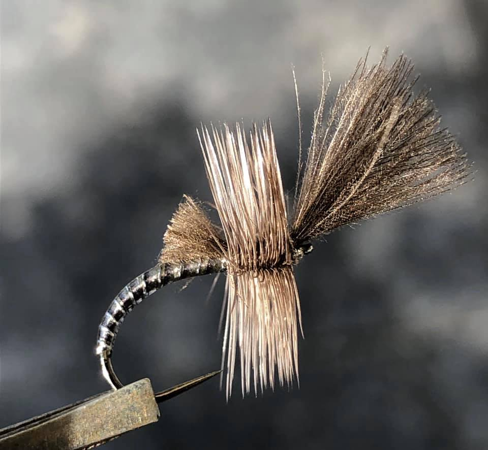Jan de Haas - Micro Metal Emerger